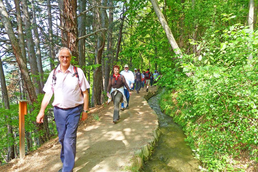 Gemeinsame Wanderungen durch Naturns und Umgebung