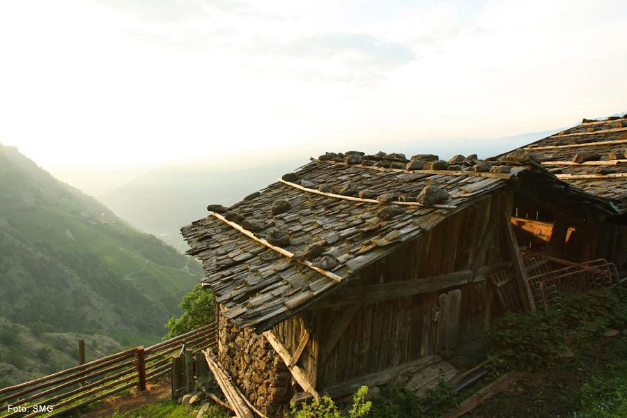 Wanderung zu gemütlichen Höfen am Naturnser Sonnenberg